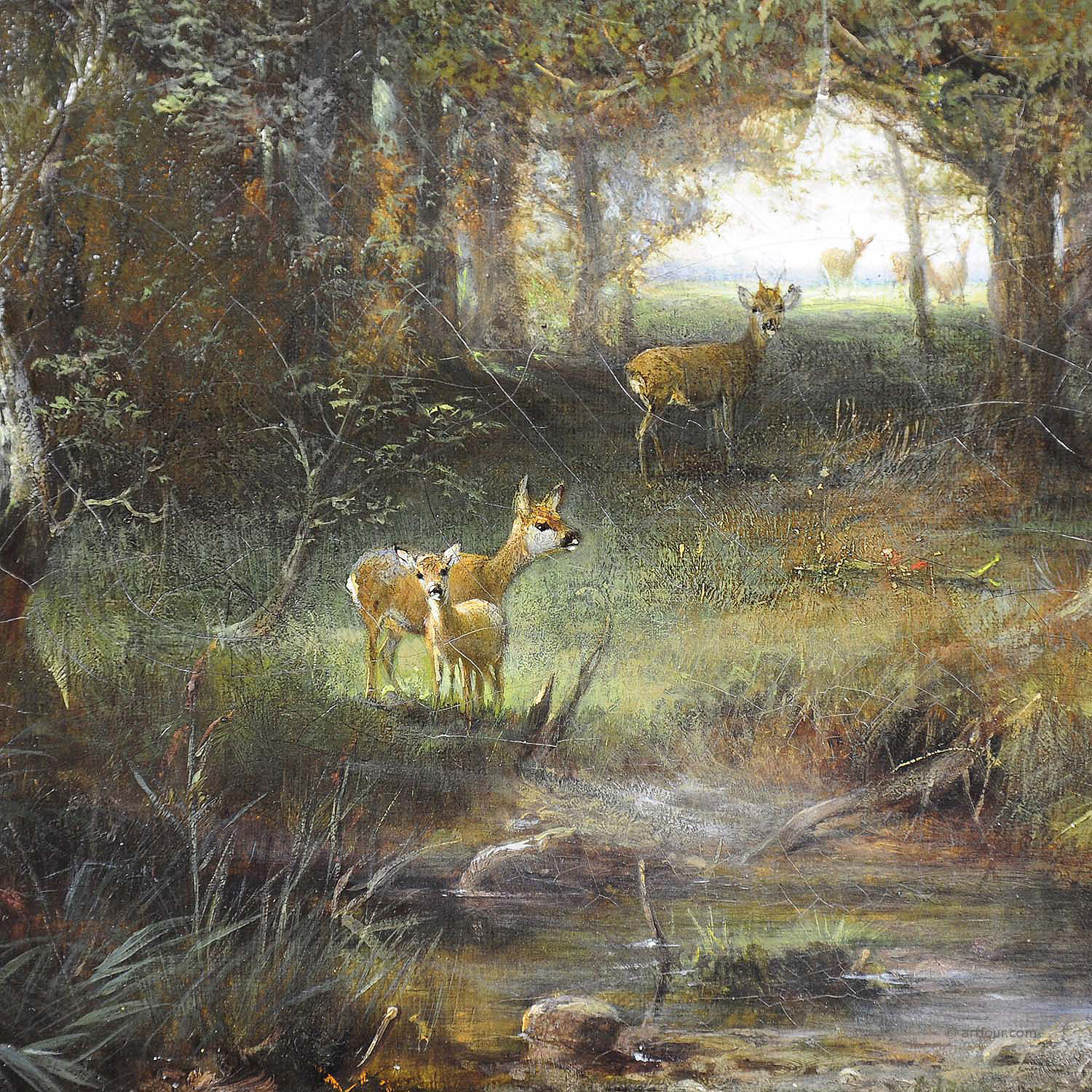 Antique Oil Painting Deer Family In The Forest